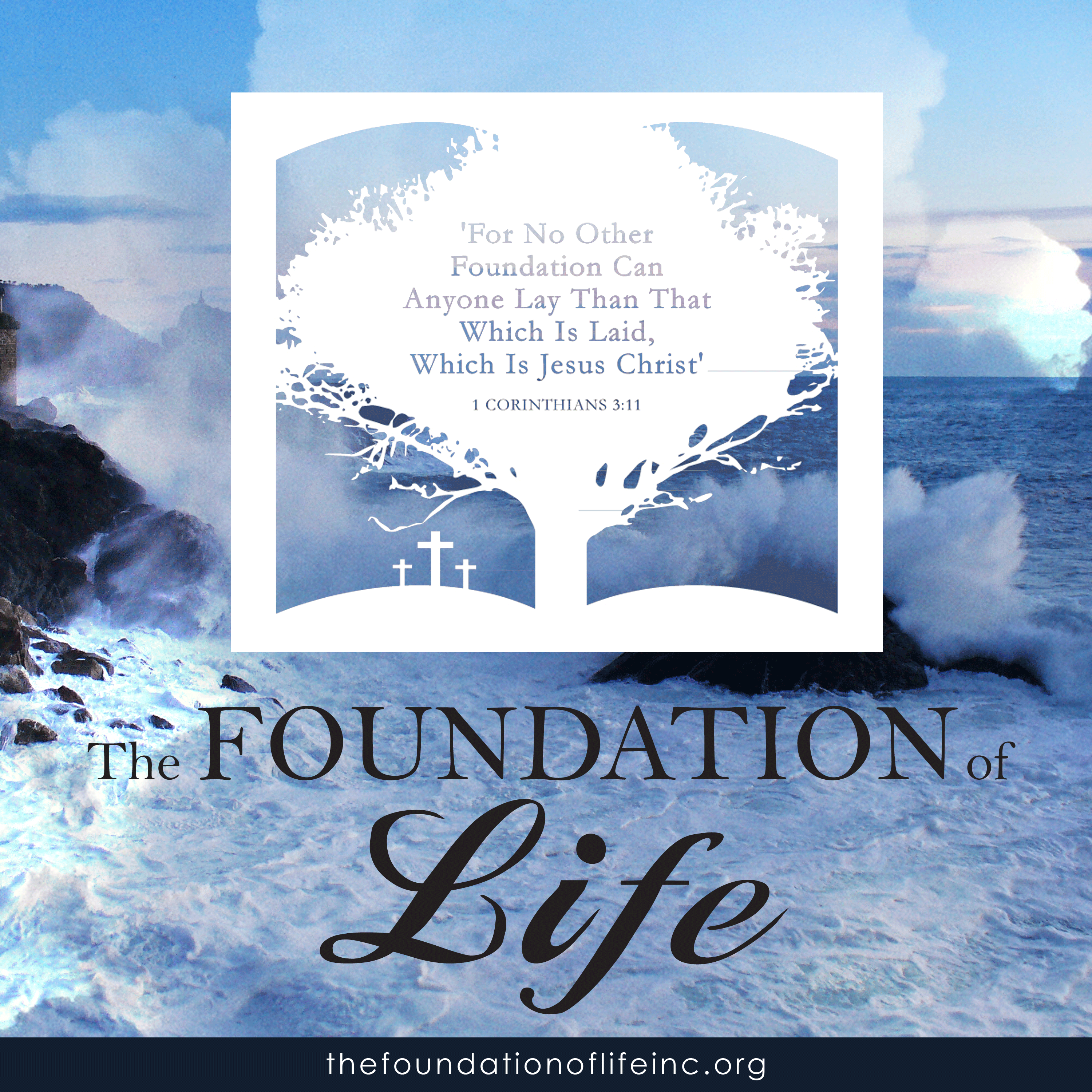 The Foundation of life Inc